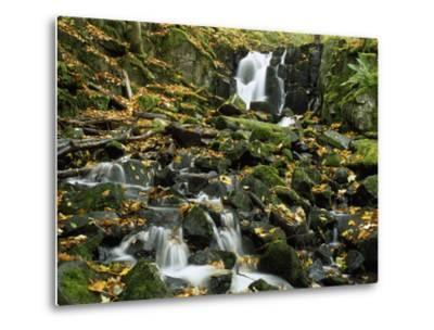 Small Waterfalls Cascading over Moss-Covered Rocks-Norbert Rosing-Metal Print