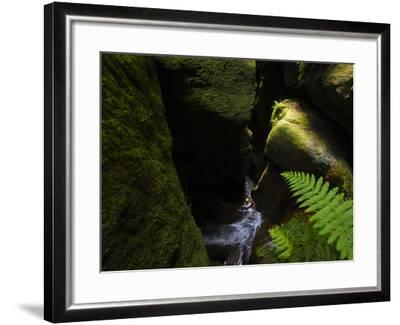 A Canyoneer Wades Through a Moss Covered Passage-Peter Carsten-Framed Photographic Print