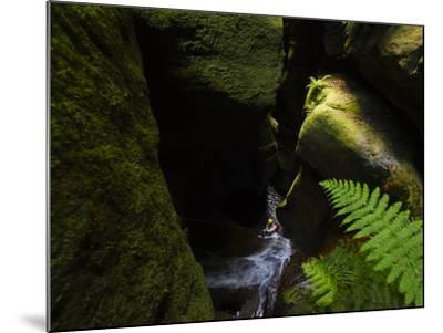 A Canyoneer Wades Through a Moss Covered Passage-Peter Carsten-Mounted Photographic Print