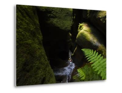 A Canyoneer Wades Through a Moss Covered Passage-Peter Carsten-Metal Print