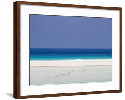 White Sand Beaches Stretch for Miles at Detwah Lagoon-Michael Melford-Framed Photographic Print