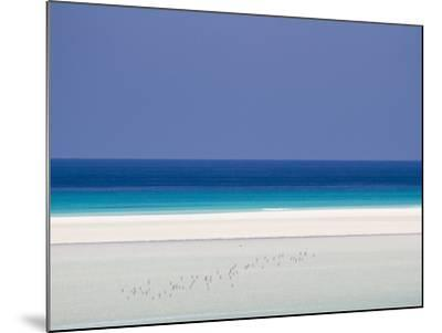 White Sand Beaches Stretch for Miles at Detwah Lagoon-Michael Melford-Mounted Photographic Print