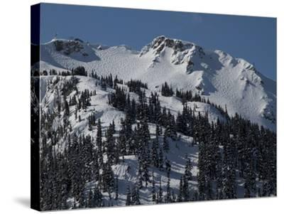 A View of Snow-Blanketed Whistler Peak Forested with Evergreen Trees-Tim Laman-Stretched Canvas Print