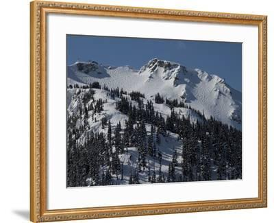A View of Snow-Blanketed Whistler Peak Forested with Evergreen Trees-Tim Laman-Framed Photographic Print