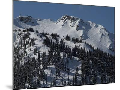 A View of Snow-Blanketed Whistler Peak Forested with Evergreen Trees-Tim Laman-Mounted Photographic Print