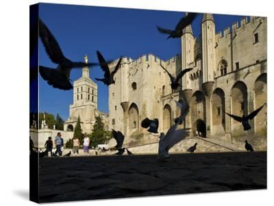Birds Fly Outside the Gothic Palais Des Papes-Jim Richardson-Stretched Canvas Print