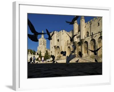 Birds Fly Outside the Gothic Palais Des Papes-Jim Richardson-Framed Photographic Print