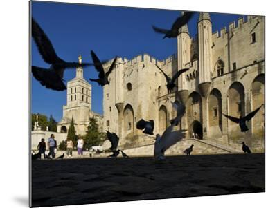 Birds Fly Outside the Gothic Palais Des Papes-Jim Richardson-Mounted Photographic Print