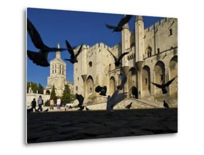Birds Fly Outside the Gothic Palais Des Papes-Jim Richardson-Metal Print