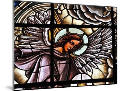 Stained Glass Window at the Basilica Del Voto Nacional-Kike Calvo-Mounted Premium Photographic Print