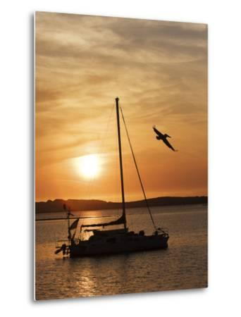 A Silhouetted Sailboat at Sunset and Flying Brown Pelican-Marc Moritsch-Metal Print