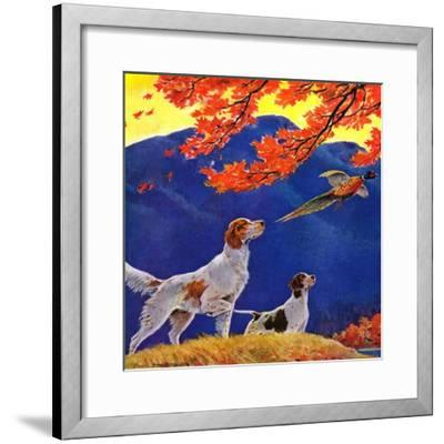"""Pointing to the Pheasant,""November 1, 1937-Paul Bransom-Framed Giclee Print"
