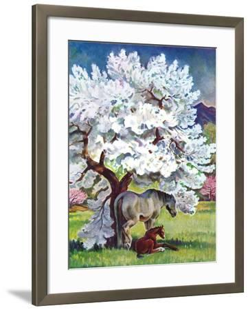 """""""Horses and Tree Blossoms,""""May 1, 1940-Paul Bransom-Framed Giclee Print"""