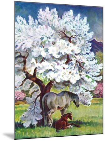 """""""Horses and Tree Blossoms,""""May 1, 1940-Paul Bransom-Mounted Giclee Print"""