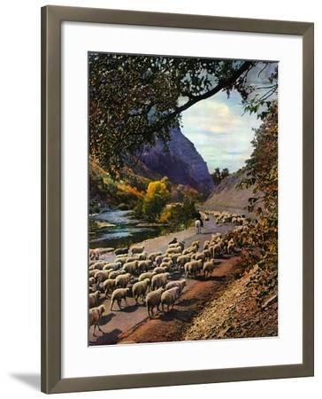 """""""Herding Sheep,""""September 1, 1943-Mike Roberts-Framed Giclee Print"""