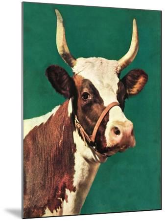 """Long-Horned Cow,""February 1, 1945-F^P^ Sherry-Mounted Giclee Print"