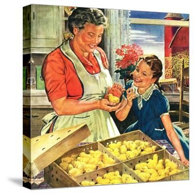 """""""Crate of New Baby Chicks,""""April 1, 1945-W^C^ Griffith-Stretched Canvas Print"""
