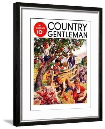 """Stealing Apples,"" Country Gentleman Cover, October 1, 1937-William Meade Prince-Framed Giclee Print"