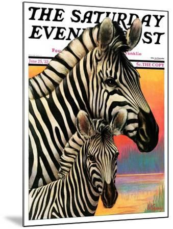 """""""Zebras,"""" Saturday Evening Post Cover, June 25, 1932-Jack Murray-Mounted Giclee Print"""