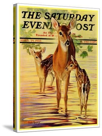 """""""Doe and Fawns,"""" Saturday Evening Post Cover, April 29, 1933-Jack Murray-Stretched Canvas Print"""