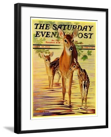 """""""Doe and Fawns,"""" Saturday Evening Post Cover, April 29, 1933-Jack Murray-Framed Giclee Print"""