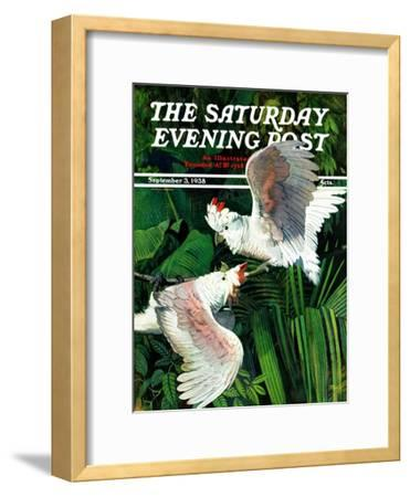 """""""Two Cockatoos,"""" Saturday Evening Post Cover, September 3, 1938-Julius Moessel-Framed Giclee Print"""