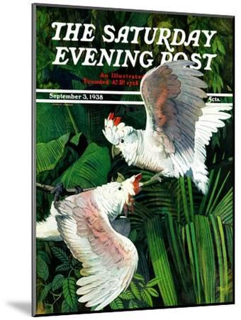 """""""Two Cockatoos,"""" Saturday Evening Post Cover, September 3, 1938-Julius Moessel-Mounted Giclee Print"""