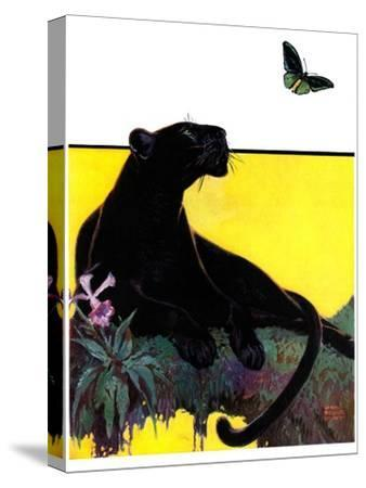 """""""Black Panther,""""August 13, 1932-Lynn Bogue Hunt-Stretched Canvas Print"""