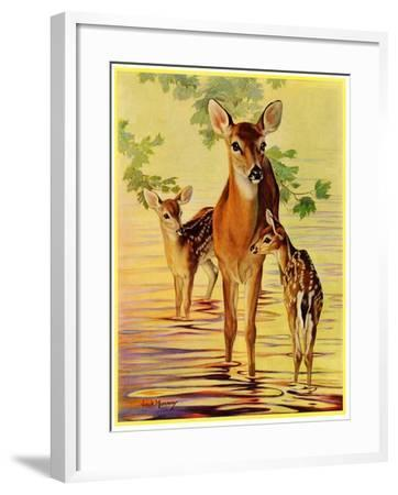 """""""Doe and Fawns,""""April 29, 1933-Jack Murray-Framed Giclee Print"""