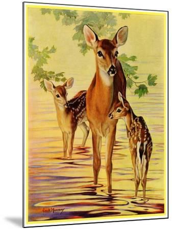 """""""Doe and Fawns,""""April 29, 1933-Jack Murray-Mounted Giclee Print"""