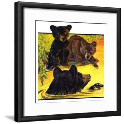 """Bear and Cubs in River,""August 25, 1934-Jack Murray-Framed Giclee Print"