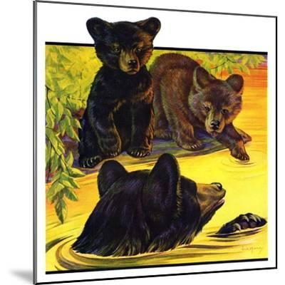 """Bear and Cubs in River,""August 25, 1934-Jack Murray-Mounted Giclee Print"