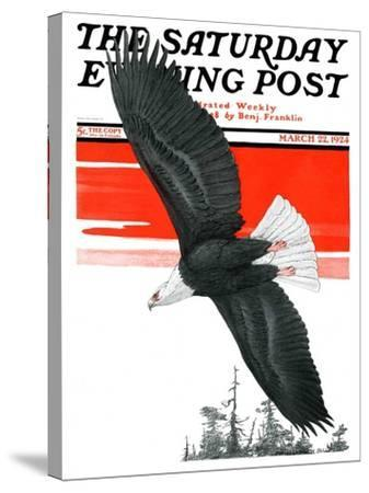 """Soaring Eagle,"" Saturday Evening Post Cover, March 22, 1924-Charles Bull-Stretched Canvas Print"