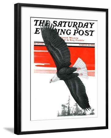 """Soaring Eagle,"" Saturday Evening Post Cover, March 22, 1924-Charles Bull-Framed Giclee Print"