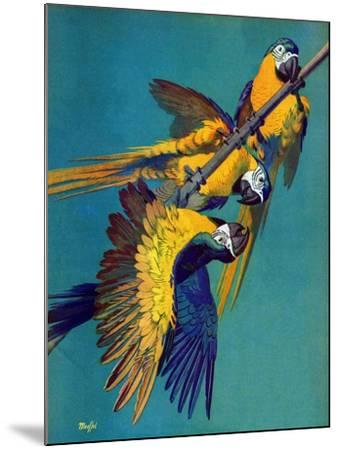 """Three Parrots,""March 11, 1939-Julius Moessel-Mounted Giclee Print"