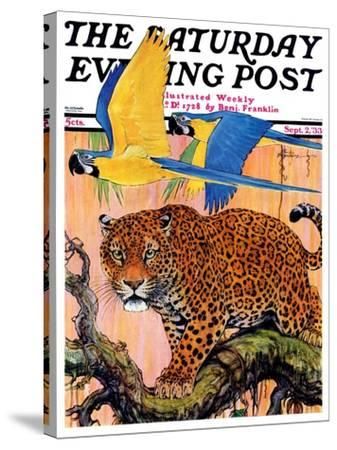 """""""Leopard and Parrots in Jungle,"""" Saturday Evening Post Cover, September 2, 1933-Paul Bransom-Stretched Canvas Print"""