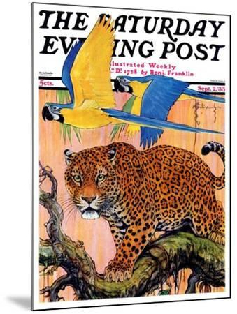 """""""Leopard and Parrots in Jungle,"""" Saturday Evening Post Cover, September 2, 1933-Paul Bransom-Mounted Giclee Print"""