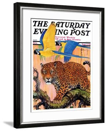 """""""Leopard and Parrots in Jungle,"""" Saturday Evening Post Cover, September 2, 1933-Paul Bransom-Framed Giclee Print"""