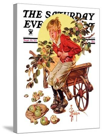 """""""Too Many Green Apples,"""" Saturday Evening Post Cover, September 16, 1933-Joseph Christian Leyendecker-Stretched Canvas Print"""