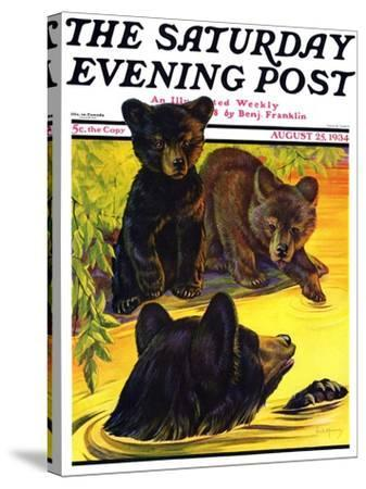 """Bear and Cubs in River,"" Saturday Evening Post Cover, August 25, 1934-Jack Murray-Stretched Canvas Print"