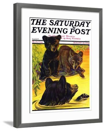 """Bear and Cubs in River,"" Saturday Evening Post Cover, August 25, 1934-Jack Murray-Framed Giclee Print"