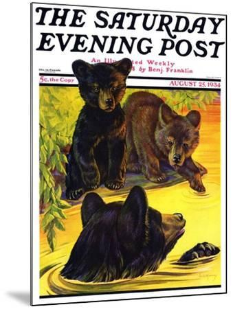 """Bear and Cubs in River,"" Saturday Evening Post Cover, August 25, 1934-Jack Murray-Mounted Giclee Print"