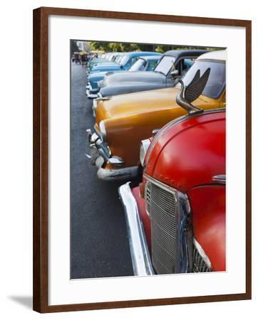 Cuba, Havana, Central Havana, Parque De La Fraternidad, Old 1950s-Era US Cars-Walter Bibikow-Framed Photographic Print