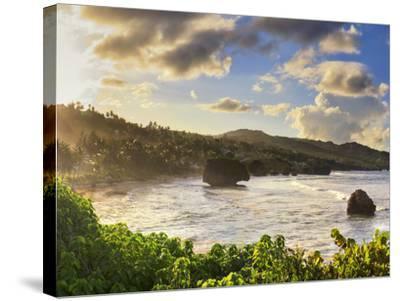 Caribbean, Barbados, Bathsheba Bay-Michele Falzone-Stretched Canvas Print
