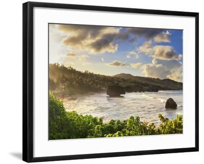 Caribbean, Barbados, Bathsheba Bay-Michele Falzone-Framed Photographic Print