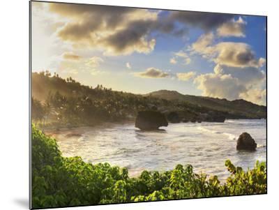 Caribbean, Barbados, Bathsheba Bay-Michele Falzone-Mounted Photographic Print
