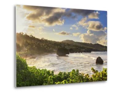 Caribbean, Barbados, Bathsheba Bay-Michele Falzone-Metal Print