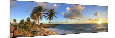 Caribbean, Barbados, Bottom Bay Beach-Michele Falzone-Mounted Photographic Print