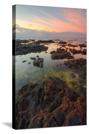 Sunrise Lava Pools at Poipu-Vincent James-Stretched Canvas Print