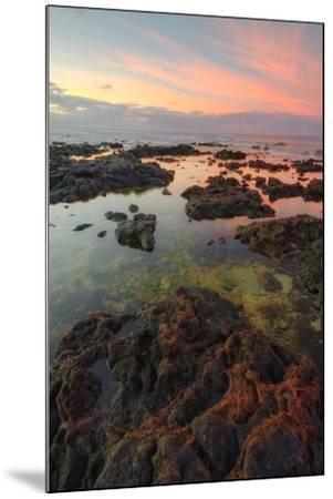 Sunrise Lava Pools at Poipu-Vincent James-Mounted Photographic Print